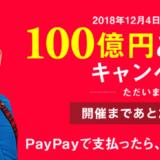 PAYPAY(ペイペイ)のキャンペーンは本当にお得なのか?メリット・デメリットを販売員目線でチェックします。