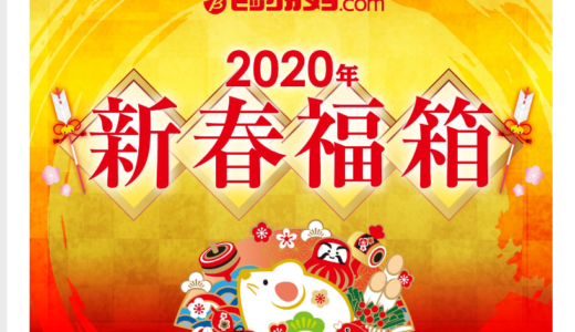ビックカメラ 2020年 福袋(福箱)受付開始!2019年そしてヨドバシカメラと比較して中身を予想致します。